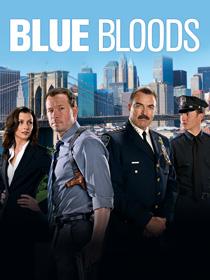 Blue Bloods Burning Series